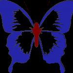 rwb butterfly